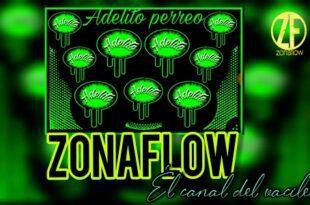 Batería champetera zonaflow las mas descargadas de la web