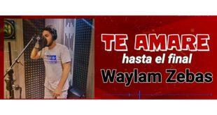 Te amare hasta el final – Waylam Zebas (Audio Oficial )