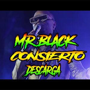 concierto mr black champeta